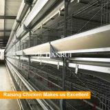 Poulette de qualité soulevant le matériel avec le système alimentant automatique