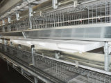 H печатает рамке автоматическую систему на машинке клетки цыпленка бройлера для хуторянина