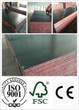la película de la base del álamo de 18m m hizo frente a la madera contrachapada (HB300)