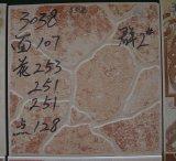 azulejos de suelo de cerámica de los 30X30cm (3034