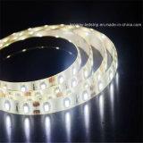 제안 무료 샘플은 4.8W/M SMD3528 유연한 LED 지구를 방수 처리한다