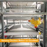 Тип позем пояса позема PP извлекая систему для клетки цыпленка батареи