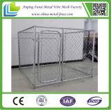 미국 Market를 위한 Frame Top를 가진 사슬 Link Fence Dog Kennels