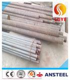 Tubo senza giunte/tubo dell'acciaio inossidabile di ASTM 304