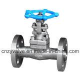 """API602 Class600 1 1/4 """" di A105 ha forgiato la valvola a saracinesca d'acciaio della flangia (Z41H-DN32-600LB)"""
