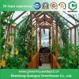 Serra del giardino di plastica agricolo