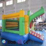 Bouncer inflável LG9050 de Lovey do tema da râ do projeto da água dos Cocos