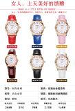 Rosegold 회중시계 딱지 다채로운 가죽끈을%s 가진 형식 숙녀 시계