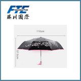 Anunciando a luz do sol do guarda-chuva e o guarda-chuva da chuva para a promoção