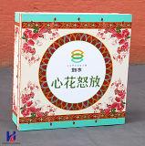 Изготовленный на заказ шикарная коробка подарка картона печатание цвета высокого качества