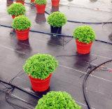 Barrière de couverture au sol/Weed de PP/PE/aménagement du couvre-tapis de tissu/jardin