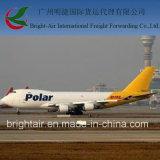 Transporte brilhante do ar ex barato das companhias do frete de ar do Res de Guangzhou (Hong Kong) China a Honduras