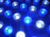 Il corallo della scogliera coltiva il dispositivo programmabile a distanza chiaro dell'acquario LED