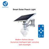 1개의 태양 LED 정원 가로등에서 Bluesmart 12W 전부