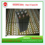1.2V 22ah Ni-CD alkalische Batterie für UPS, Gleis, Nebenstelle (24V22Ah)