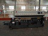 Fabrikant 10 Assen/de Rechte Lijn die van Wielen Poolse Machine scherpen