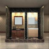 Европейские Countertops ванной комнаты нержавеющей стали конструкции