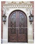 Двери ковки чугуна двери входа обеспеченностью высокого качества с Низким-E стеклом