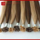 Extensões brasileiras não processadas do cabelo da queratina do cabelo humano