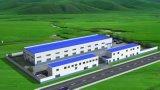 Stahlkonstruktion-Lager Arabien-Mittlerer Osten verschüttete vorfabrizierte Flugzeug-Hangar-Werkstatt/Fabrik