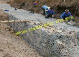 電流を通される/PVC上塗を施してある2X1X1のAnpingの工場金網Gabion
