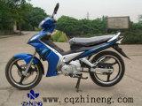 Moto (ZN125-1)