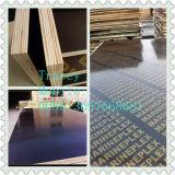 Het Triplex van de Bouw van het Gebruik van de concrete Plak/het Triplex van de Bekisting