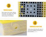 De Hhd incubadora automática del huevo de codornices por completo pequeña para 48 huevos