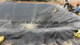 防水HDPE Geomembraneの川、魚のいる池、プールのHDPEのフィルム