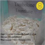 인간적인 성장 남성 근육은 스테로이드 99% 순수성 Trenbolone Enanthate 분말을 승진시킨다