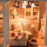 Casa de boneca diminuta de madeira inteletual do brinquedo DIY