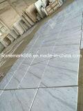Tuile de marbre de Volakas, marbre blanc de Volakas de tuile de mur, Mable pour des étages