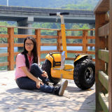 Fabrik-Preis geaufladenes elektrisches Skateboard weg vom Straßen-intelligenten elektrischen Roller