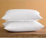 6cm 백색 오리 기털 채우는 침대 베개