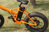 Modelo nuevo una rueda gorda de la garantía del año pequeña plegable la bicicleta eléctrica