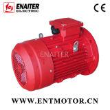 Motor elétrico especial com inoxidável Shaft