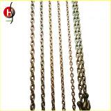 耐久G80合金鋼鉄持ち上がる鎖