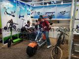 グリーン電力のリチウム電池の脂肪質のタイヤのHarleyの販売Citycocoのための電気移動性のスクーター