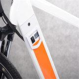 隠された電池(RSEB-304)が付いている最もよいMTBの電気自転車