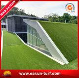 voor het Modelleren van de Tuin het Synthetische Gazon van het Gras