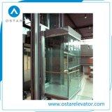商業外形図および屋外のガラスパノラマ式の上昇