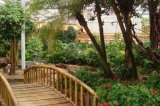 Piante di alta qualità e fiori artificiali del giardino verticale Gu44567219454