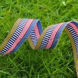 A forma listrou o vestuário/roupa coloridos jacquard elásticos