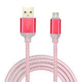 변하기 쉬워 색깔 빛을%s 가진 1 미터 USB 충전기 데이터 케이블