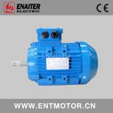 Eficiência IE3 premium Motor em Ral5015