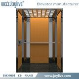 Elevador casero de cristal de la elevación del pasajero de la persona de la marca de fábrica 4 de Joylive
