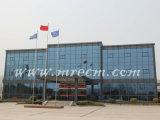Fábrica/almacén de la estructura de acero de la alta calidad