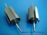 El motor micro de calidad superior parte el rotor 23mmx3p