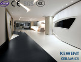el nuevos suelo y pared de la porcelana del suelo de la inyección de tinta de 4.8m m enrarecen los azulejos