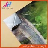 Film auto-adhésif transparent de vinyle
